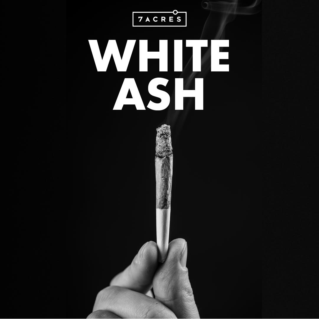 White Ash: One Indicator of Quality